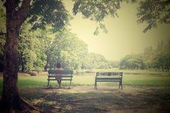 giovane donna sola sul banco in parco, nello stile d'annata Fotografie Stock