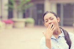 Giovane donna sonnolenta di affari che sbadiglia Fotografia Stock