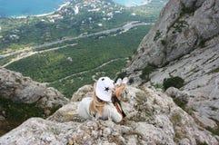 Giovane donna sopra la montagna Fotografia Stock