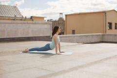 Giovane donna in una posa ascendente del cane del rivestimento di yoga Immagine Stock Libera da Diritti