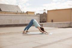 Giovane donna in una posa orientata verso il basso del cane di yoga Fotografia Stock
