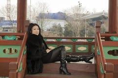 Giovane donna in vestiti di pelliccia scura Fotografie Stock