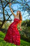 Giovane donna in vestito rosso Fotografia Stock