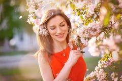 Giovane donna in vestito rosso Immagini Stock