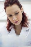 Giovane e bello medico, laboratorio, scienziato che si siede in un co bianco Fotografie Stock Libere da Diritti