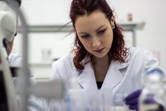 Giovane e bello medico, laboratorio, scienziato che si siede in un co bianco Immagine Stock Libera da Diritti
