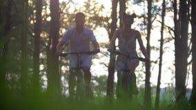 Giovane e donna che ciclano attraverso l'abetaia stock footage