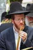 Giovane ebreo rosso-barbuto religioso Immagini Stock Libere da Diritti