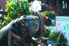 Giovane elefante che spruzza acqua Immagine Stock Libera da Diritti