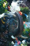 Giovane elefante che spruzza acqua Fotografia Stock
