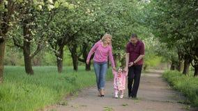 Giovane famiglia che cammina nella sosta stock footage