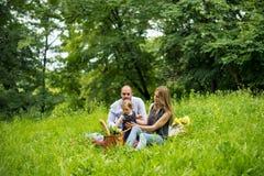 Giovane famiglia che ha picnic fotografie stock libere da diritti