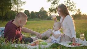 Giovane famiglia che ha primo picnic nel parco di tramonto archivi video