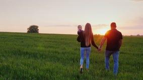 Giovane famiglia felice con il bambino Vanno al campo verde pittoresco al tramonto Colpo di Steadicam, retrovisione archivi video