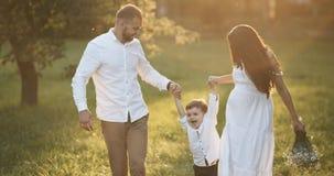 Giovane famiglia felice con il bambino Vanno al campo verde pittoresco al tramonto Il ragazzo è alzato dei genitori Tramonto video d archivio