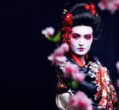 Giovane geisha graziosa in kimono con sakura e decorazione su fondo nero immagine stock
