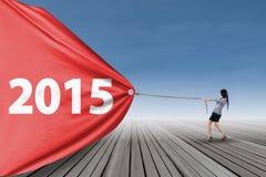 Giovane impiegato e numero 2015 Immagine Stock Libera da Diritti