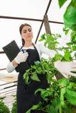 Giovane ingegnere femminile di agricoltura che ispeziona le piante Fotografie Stock Libere da Diritti