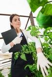 Giovane ingegnere femminile di agricoltura che ispeziona pianta Fotografie Stock Libere da Diritti