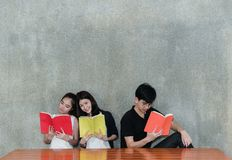 Giovane libro sorridente delle cartelle della scuola della lettura del gruppo di studenti Immagini Stock