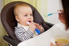 Giovane madre che alimenta il suo piccolo figlio del bambino con porridge, che sedendosi nell'alta sedia del bambino per alimenta Fotografia Stock