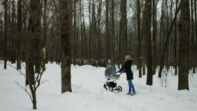 Giovane madre che cammina con il bambino in passeggiatore nel parco di inverno colpo 4k stock footage