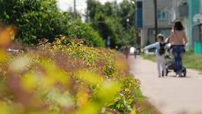 Giovane madre che cammina con la figlia all'aperto nel parco che spinge carrozzina video d archivio