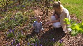 Giovane madre che gioca e che parla con un figlio del neonato su un campo del muscari in primavera - giorno soleggiato - giacinto video d archivio