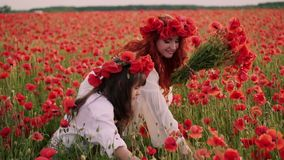 Giovane madre con poca figlia raccogliere i fiori rossi del papavero in un campo sbocciante, movimento lento archivi video