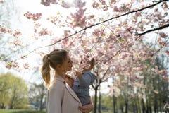 Giovane mamma della madre che tiene il suo piccolo bambino del ragazzo del figlio del bambino sotto gli alberi sboccianti di SAKU immagine stock