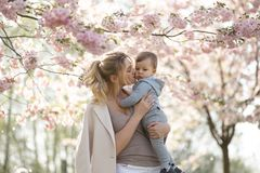 Giovane mamma della madre che tiene il suo piccolo bambino del ragazzo del figlio del bambino sotto gli alberi sboccianti di SAKU immagini stock libere da diritti
