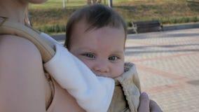 Giovane mamma felice con la neonata in ergo zaino che cammina nel parco stock footage