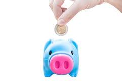 Giovane mano delle donne che mette la moneta dei soldi nel maiale di risparmio, tema di finanza Fotografia Stock Libera da Diritti