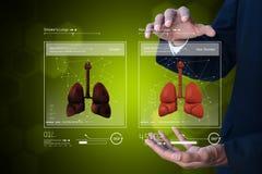 Giovane medico che mostra i polmoni Immagine Stock Libera da Diritti