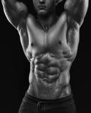 Giovane modello muscolare ed adatto del maschio di forma fisica del culturista Fotografia Stock