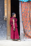 Giovane monaco buddista tibetano nel monastero di Lamayuru, Ladakh, India Immagine Stock