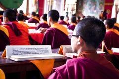 Giovane monaco che legge testo religioso buddista Fotografia Stock Libera da Diritti