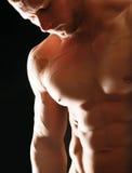 Giovane muscolare in buona salute immagini stock libere da diritti