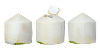 Giovane noce di cocco fresca isolata su bianco Immagine Stock Libera da Diritti