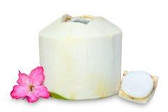 Giovane noce di cocco pronta a bere con il fiore rosa isolato su bianco Fotografia Stock Libera da Diritti