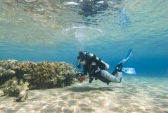 Giovane operatore subacqueo femminile in acque basse libere. fotografie stock