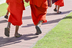 Giovane passeggiata del monaco Immagini Stock