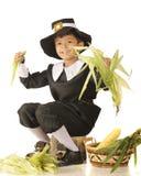 Giovane pellegrino Husker Fotografia Stock Libera da Diritti