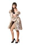 Giovane posa castana in cappotto del leopardo immagini stock libere da diritti