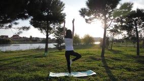 Giovane ragazza attraente che fa gli esercizi, ponente ed allungante su una stuoia di yoga in parco Concetto attivo sano video d archivio