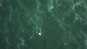 Giovane ragazza del surfista che cerca per le onde archivi video