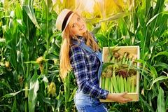 Giovane ragazza dell'agricoltore sul campo di grano Fotografie Stock