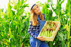 Giovane ragazza dell'agricoltore sul campo di grano Immagini Stock
