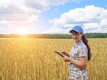 Giovane ragazza graziosa dell'agricoltore che sta nel giacimento di grano giallo Fotografia Stock Libera da Diritti