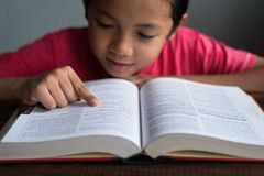 Giovane ragazzo asiatico che legge un libro Immagini Stock